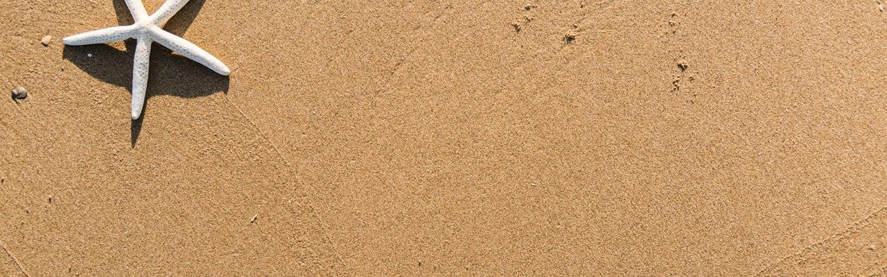 background-beach-daylight-1451360